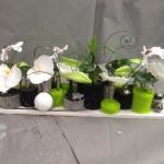 formation fleuriste-noel 10