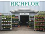 logo-richflor